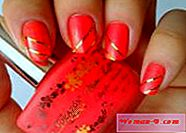 photos 2017: Coral manicure Mody